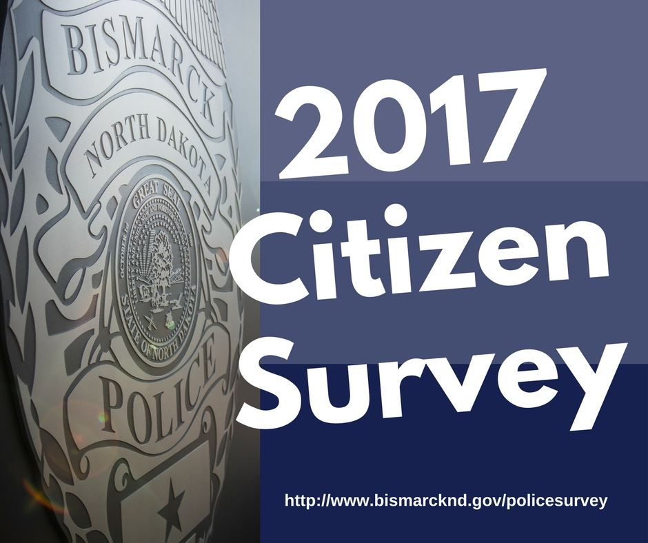 2017CitizenSurvey (1)