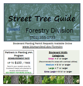 2019 street tree guide cover